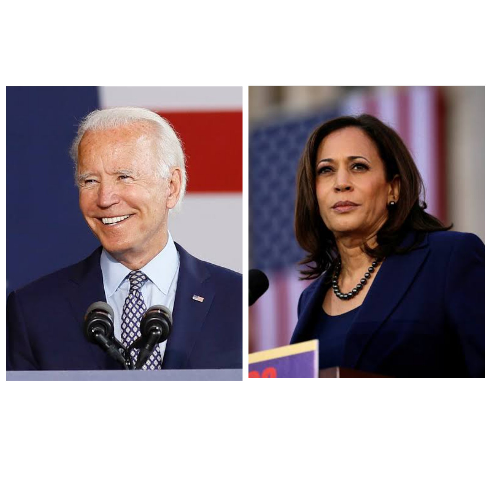 Biden and Harris make 1st appearance as historic